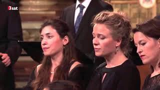 Missa Salisburgensis à 53