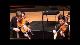 Double viola concerto