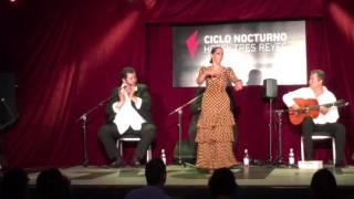 Flamenco on Fire