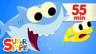Baby Shark | + More Kids Songs