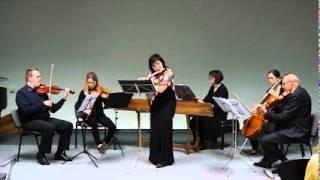 Flute Concerto g-minor