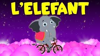 L'elefant en bicicleta