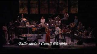 Ballo Sardo / Cavall D'Aràbia