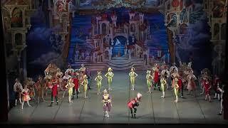 Cipollino Ballet
