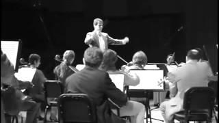 Symphony in D - I. Adagio - Allegro vivace
