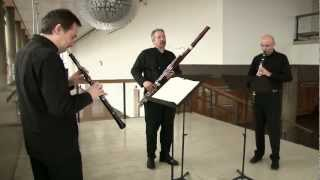 Trio for Oboe, Clarinet, and Bassoon: II Romance