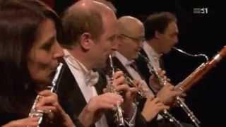 Symphony No. 1 in D - Allegro di molto