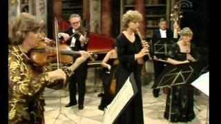 Brandenburg Concerto No. 4 in G major, BWV 1049 - I Mov.