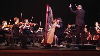 Harp Concerto in B flat Major 294 - First movement