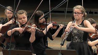 Concerto for Violin and Oboe in c minor, BWV 1060
