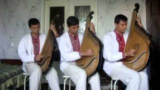 Bandura ukraniana - Бумер, бандура