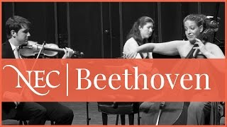 Piano Trio in E-flat major, Op. 70, no. 2