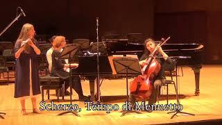 Piano Trio Op 17, in G minor