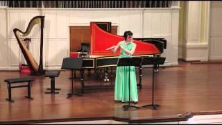 Solo No. 3 for flute