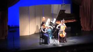 Piano Trio in G minor - 1st Movement
