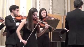 Concierto para violín en La menor D 113