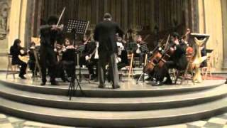 Concerto For Violin And String Orchestra (Distant Light)