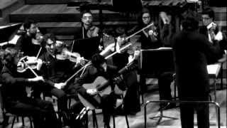 Concerto Elegíaco (para guitarra y orquesta)