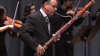 Bassoon Concerto in g minor, RV 495