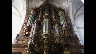A selection of organ works