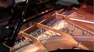 Sonatas and Interludes - Sonata V