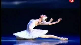 El carnaval de los animales - Muerte del cisne