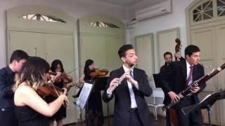 Sinfonía concertante en Fa mayor para Flauta, Fagot y orquesta de cuerdas