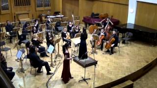 Concerto No. 7 in E minor, for flute and orchestra