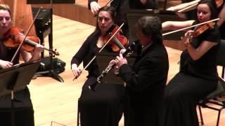 Fantasía para clarinete y orquesta