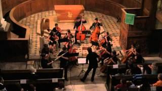Andante sostenuto para flauta y cuerda