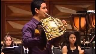 Concert Nº2 (para trompa y orquesta de cuerda)