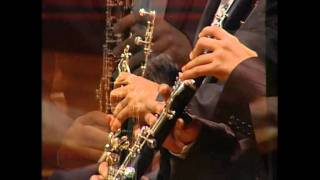 Concierto Nº 1  para clarinete y corno di bassetto