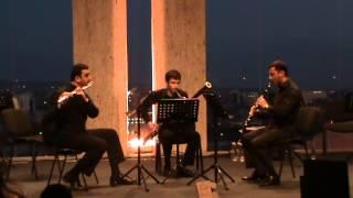 Trio Flute, Clarinet, Bassoon