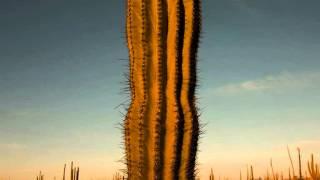 Paisajes Mexicanos (Variaciones sinfónicas)