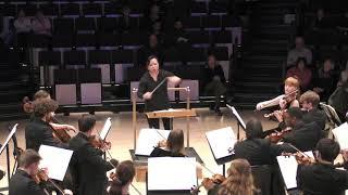 Symphony No. 5 -II Mov
