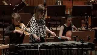 Concerto Pour Vibraphone et Orchestre a Cordes