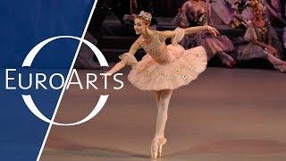 The Nutcracker (Cascanueces). Ballet en dos actos