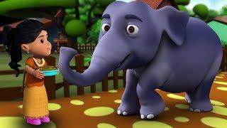 हाथी राजा कहाँ चले