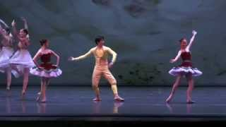 Cipollino Ballet,