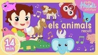 Les Millors Cançons per a Nens | + Recull - Els animals