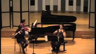 Fantasia Concertante op. 256