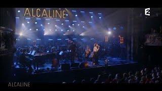 Alcaline, Le Concert