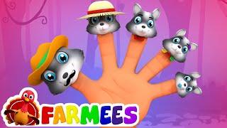Famille de doigt de loup