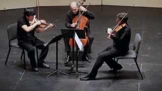 Serenade for string trio in C major op.10