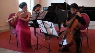 Grand Sonata in F op. 65 for flute, cello, piano (1st)