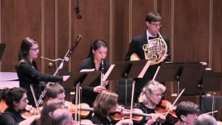 Sinfonia Concertante (III)