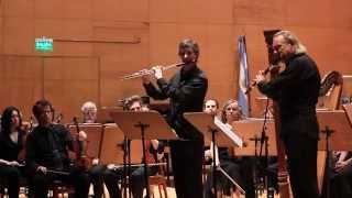 Concierto para dos flautas