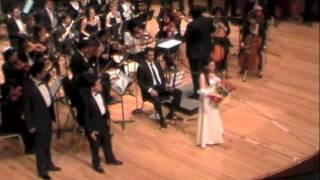 Mulata de Córdoba (versión concierto)