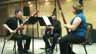 Three pieces for bassoon trio